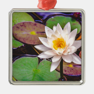 Lily pad on the water metal ornament