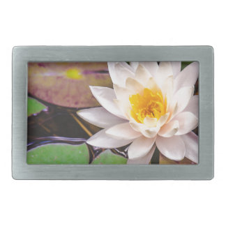 Lily pad on the water rectangular belt buckles