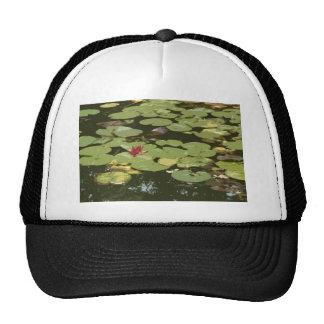 Lily pads Impressionism Art Trucker Hat