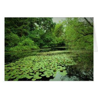 Lily Pads on the Pond Card