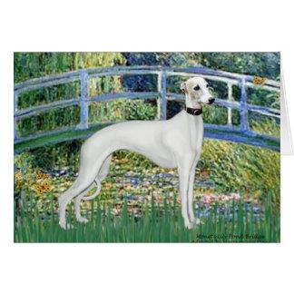 Lily Pond Bridge - White Whiipet (11b)A Card