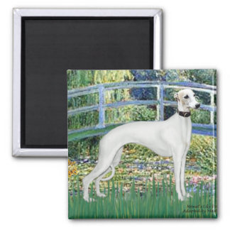 Lily Pond Bridge - White Whiipet (11b)A Square Magnet