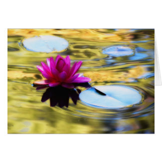 Lily Ripples - Water Lily Card