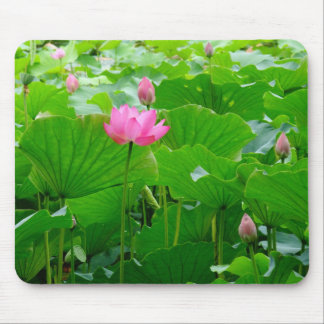 Lily Standing Tall Mousepads