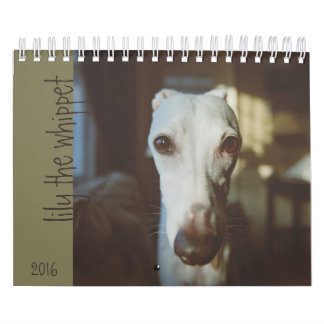 Lily The Whippet Calendar 2016