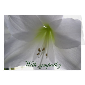 Lily With sympathy Card