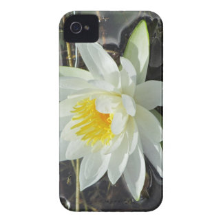 Lilypad bloom iPhone 4 Case-Mate case