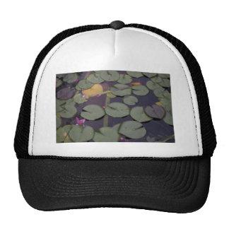 Lilypads Mesh Hat