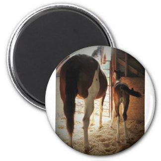 Lily's Love 2 Inch Round Magnet