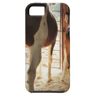Lily's Love iPhone 5 Covers