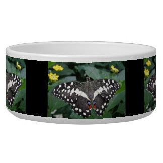 Lime Butterfly and Flowers Dog Bowl