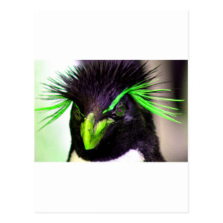 Lime Rockhopper penguin Postcard