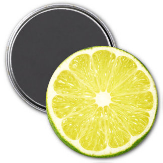 Lime Slice 3 Inch Round Magnet
