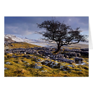 Limestone Country - The Yorkshire Dales Card