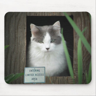 Limited Access Area Mouse Pad