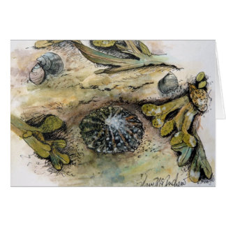 """Limpets, Periwinkle and Bladder Wrack"" Card"