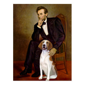 Lincoln - American Foxhound Postcard
