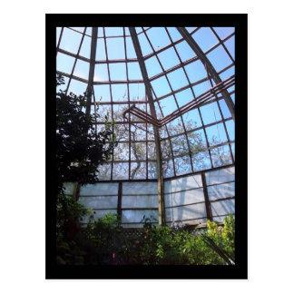 Lincoln Park Conservatory Postcard