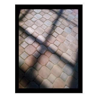 lincoln park conservatory :: spring postcard