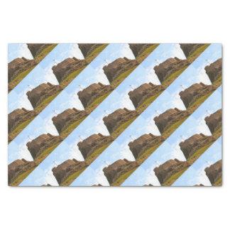 Lindisfarne Castle, Holy Island, England Tissue Paper