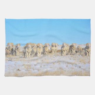 Line Em Up Rams Kitchen Towel
