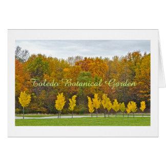 LINE OF DAZZLING YELLOW TREES/TOLEDO BOTANICAL GAR CARD