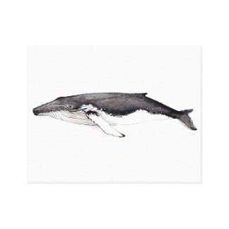 Linen cloth of a hunchbacked whale, yubarta canvas print