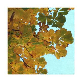 Linen cloth photographs Autumn Canvas Print