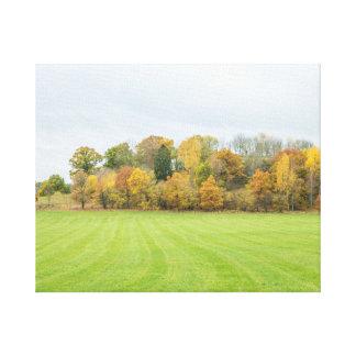 lines tree canvas print