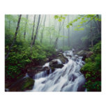 Linn Cove Creek cascading through foggy Poster