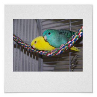 Linnies Perch Poster
