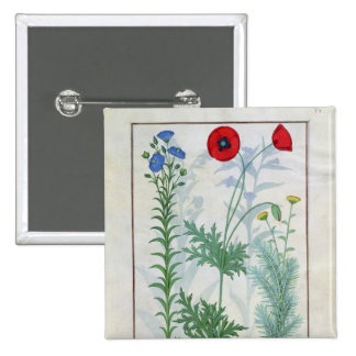 Linum, Garden poppies and Abrotanum 2 Inch Square Button