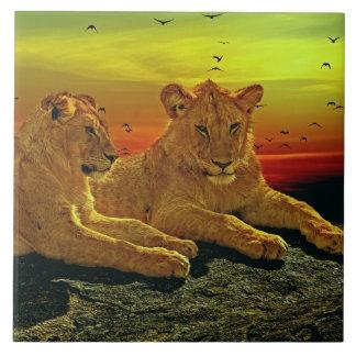 LION-2-CUBS TILE