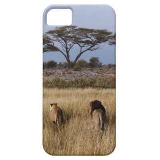 lion africa iphone4 case