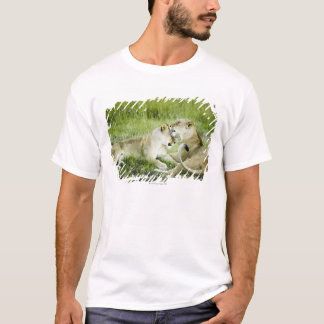 Lion and lioness, Africa 2 T-Shirt