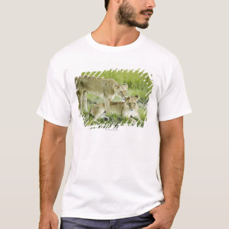 Lion and lioness, Africa T-Shirt