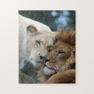 Lion and Lioness Puzzles
