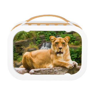Lion and Tiger Customizable Lunchboxes