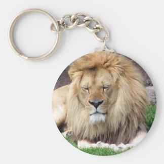Lion Around Basic Round Button Keychain