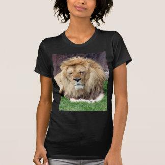 Lion Around T-Shirt