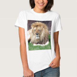 Lion Around Tee Shirts