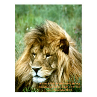 Lion bible verse postcard