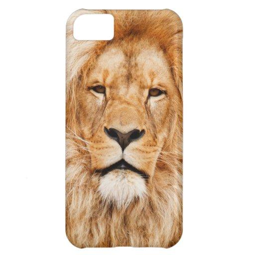 Lion_Big_Cat Iphone Case iPhone 5C Covers