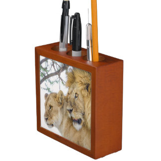 Lion Couple Desk Organizer