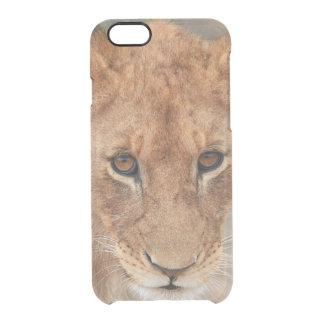 Lion Cub Clear iPhone 6/6S Case