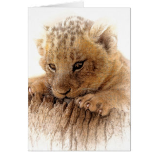 Lion cub close cute eyes lookout card