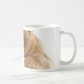 Lion cub close cute eyes lookout coffee mug