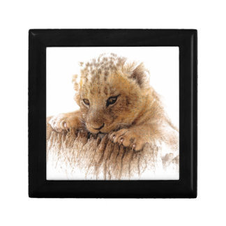 Lion cub close cute eyes lookout gift box