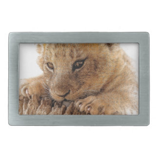 Lion cub close cute eyes lookout rectangular belt buckle