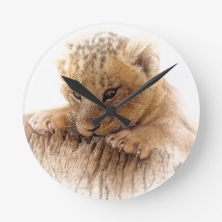 Lion cub close cute eyes lookout round clock